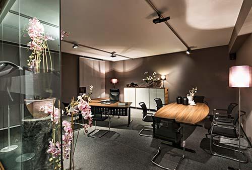 Nueva luz en el Showroom Blaha Office
