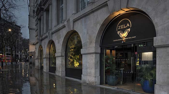 Iluminación del restaurante Zela London, un jardín tropical en Londres
