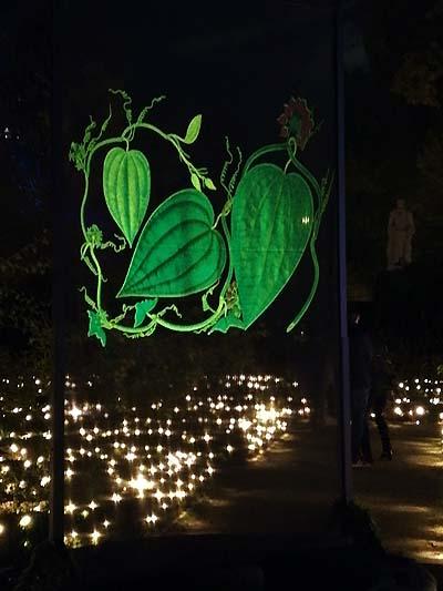 luces botanico madrid